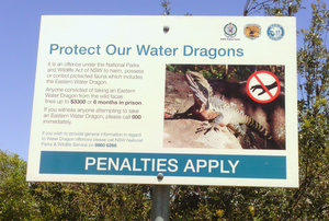 Protect Our Water Dragons sign