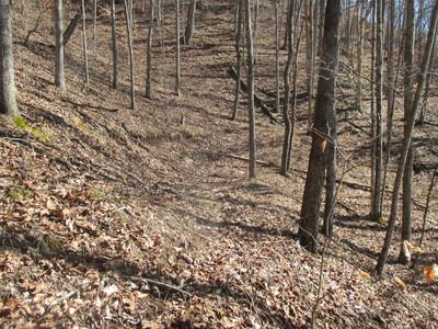barely perceptable flat spot on tree covered hillside