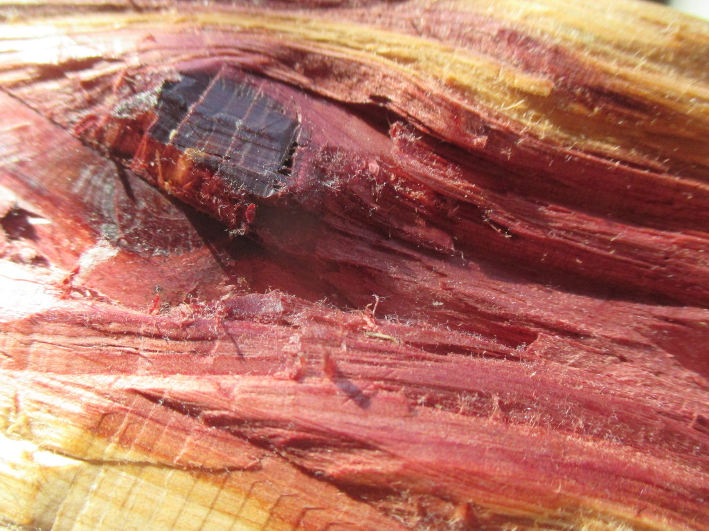 closeup of red knothole, purple-pink and yellow wood grain