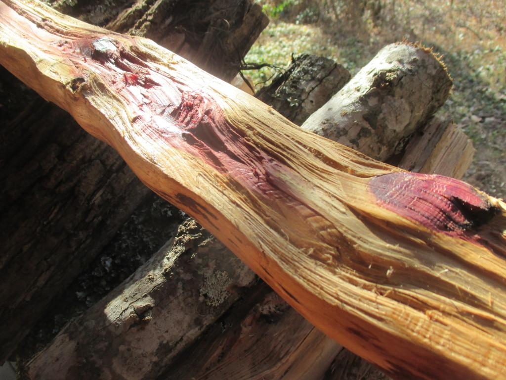 roughly split wood branch
