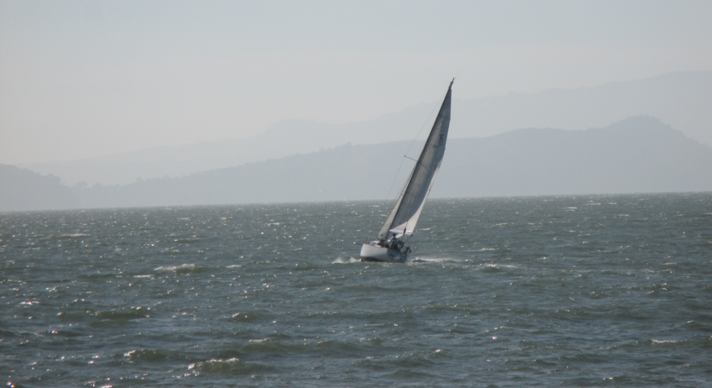 sailboat on the SF bay
